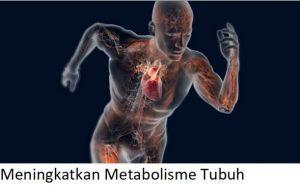 Meningkatkan Metabolisme Tubuh
